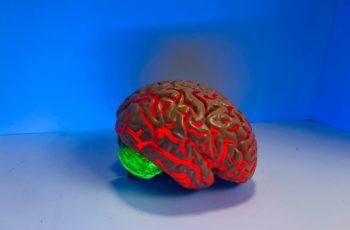 Neuroterapia, o que é